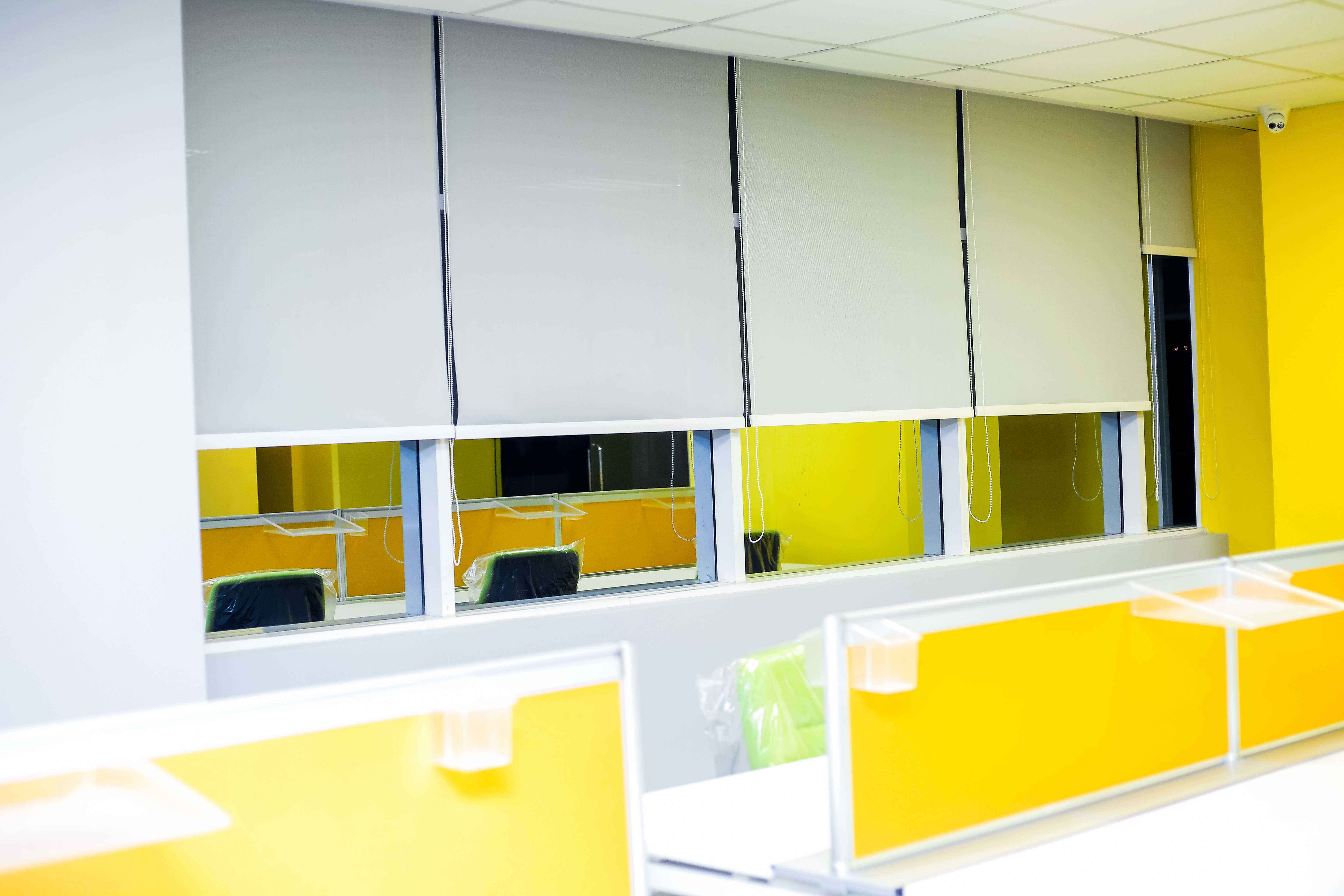 Roller Blinds At Laugfs Holdings Head Office